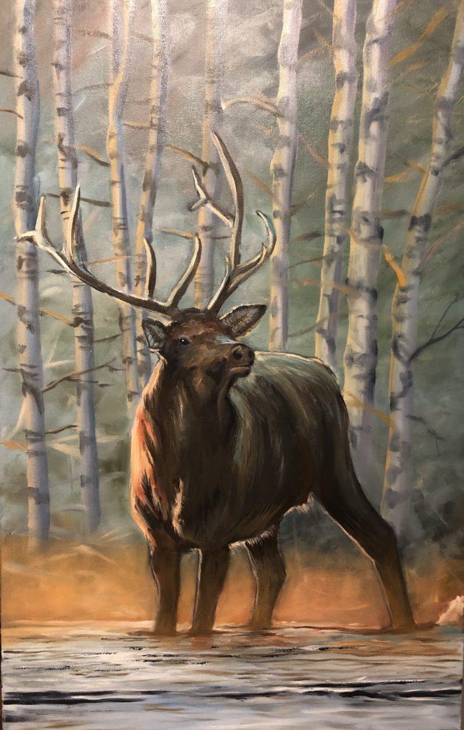 Elk_Stream